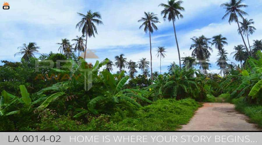 Properties Away 2 Rai Mountain View Land in Koh Samui - Lamai