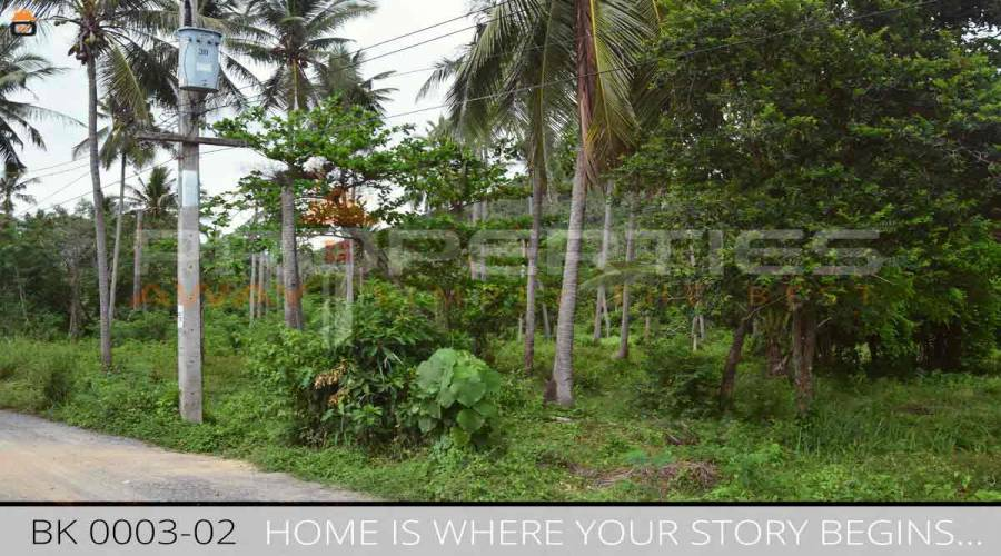 Properties Away 2 Rai Flatland close to the Beach Koh Samui - Ban Khao