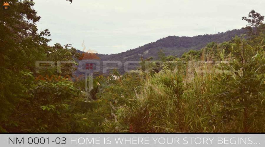 Properties Away 57 Rai Hill Land with Seaview Koh Samui - Na Muang