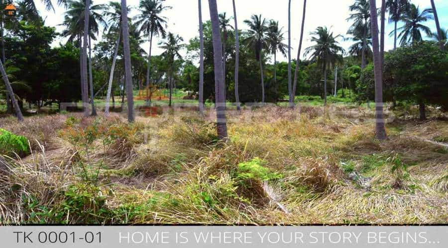 Properties Away 14 Rai Flatland on the Mainroad close to the beach Koh Samui - Thong Khrut