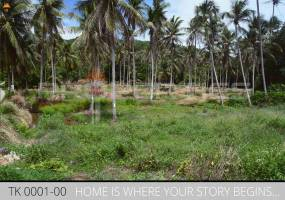 Properties Away 14 Rai Flatland on the Mainroad close to the beach Koh Samui - Thong Khrut