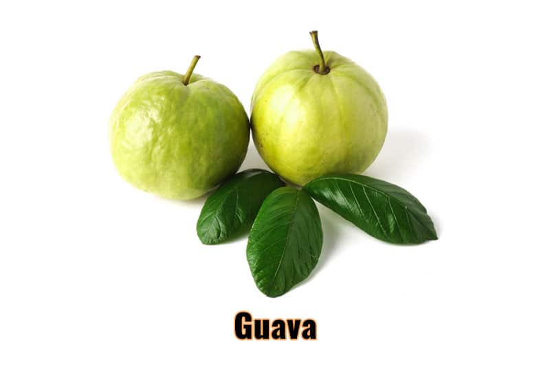 best fruits thailand guava.jpg