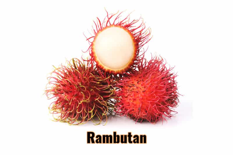 best fruits thailand rambutan.jpg