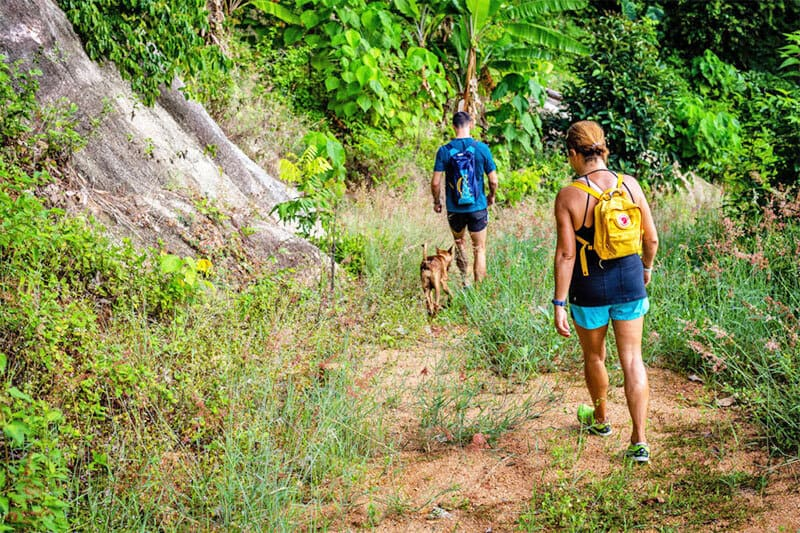 koh_samui_yoga_retreat_hiking