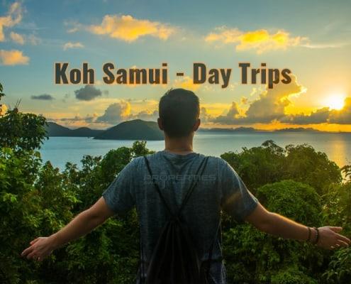 Properties Away Koh Samui Island Day Trips