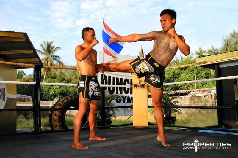 Properties Away Koh Samui Day Trips Muay Thai