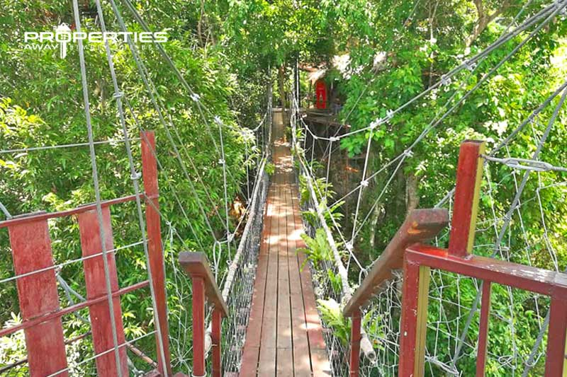 properties_away_secret_places_tree_bridge_coffee